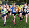 2016 Northern Cross Country Relays