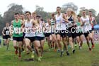 Junior men, National Cross Country Relays, Berry Park, Mansfield. Photo: David T. Hewitson/Sports for All Pics