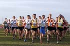 Senior mens Northern Cross Country  Championships, Pontefract. Photo: David T. Hewitson/Sports for All Pics