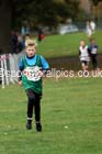 Boys under-11s Northern Cross Country Relays, Graves Park, Sheffield. Photo: David T. Hewitson/Sports for All Pics