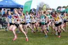 Junior women, 2016 National Cross Cpuntry Relays, Berry Hill Park, Mansfield. Photo: David T. Hewitson/Sports for All Pics