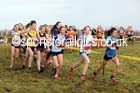 Girls under-15s North Eastern Cross Country, Aykley Heads, Durham. Photo: David T. Hewitson/Sports for All Pics