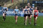 Senior and junior womens Inter-District, 2017 Great Edinburgh Cross Country. Photo: David T. Hewitson/Sports for All PIcs