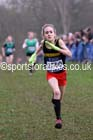 Girls under-13s Inter Counties Cross Country, Prestwold Hall, Loughborough. Photo: David T. Hewitson/Sports for All Pics