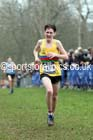 Mens under-17s Inter Counties Cross Country, Prestwold Hall, Loughborough. Photo: David T. Hewitson/Sports for All Pics