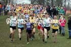 Senior mens Inter Counties Cross Country, Prestwold Hall, Loughborough. Photo: David T. Hewitson/Sports for All Pics