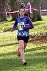 Morpeth Harriers 11k Road Race on New Year's Day. Photo: David T. Hewitson/Sports for All Pics