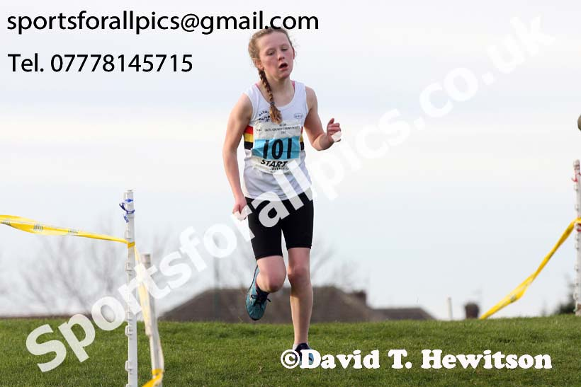 Girls under-13 North Eastern Cross Country, Redcar. Photo:  David T. Hewitson/Sports for All Pics