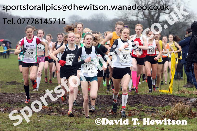 Womens under-17a  Northern Cross Country, Knowsley Safari Park. Photo: David T. Hewitson/Sports for All Pics