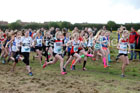 Girls under-13s Start Fitness North Eastern Harriers League, Wrekenton, Gateshead. Photo:  David T. Hewitson/Sports for All Pics