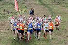 Senior mens Start Fitness North Eastern Harriers League, Wrekenton, Gateshead. Photo:  David T. Hewitson/Sports for All Pics
