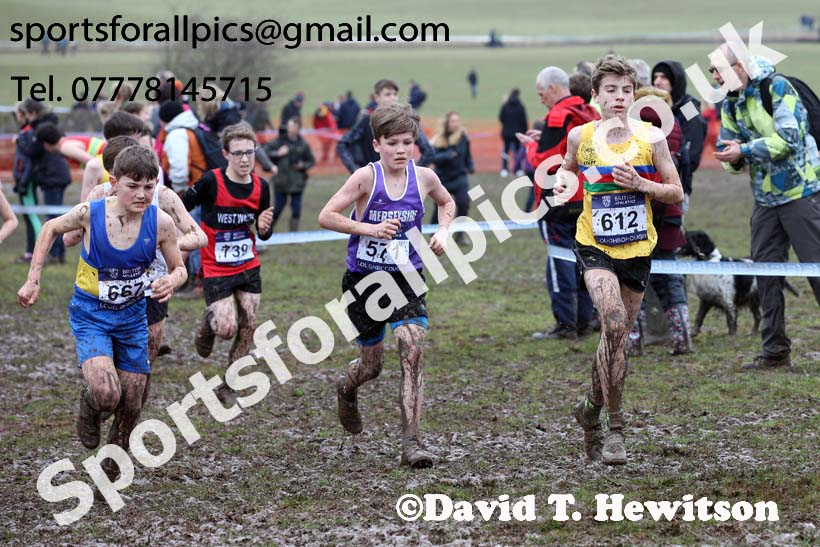Boys under-13s 2018 British Inter Counties Cross Country Champs., Prestwold Hall, Loughborough. Photo: David T. Hewitson/Sports for All Pics