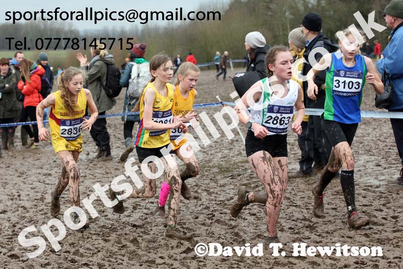 Girls under-13s 2018 British Inter Counties Cross Country Champs., Prestwold Hall, Loughborough. Photo: David T. Hewitson/Sports for All Pics
