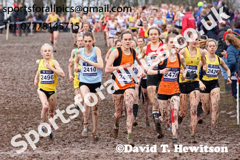 Womens under-20s 2018 British Inter Counties Cross Country Champs., Prestwold Hall, Loughborough. Photo: David T. Hewitson/Sports for All Pics