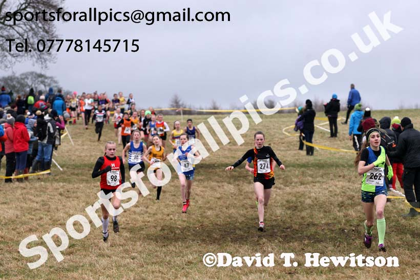 Girls under-13s, 2018 Northern Cross Country Champs., Harewood House, Leeds. Photo: David T. Hewitson/Sports for All Pics