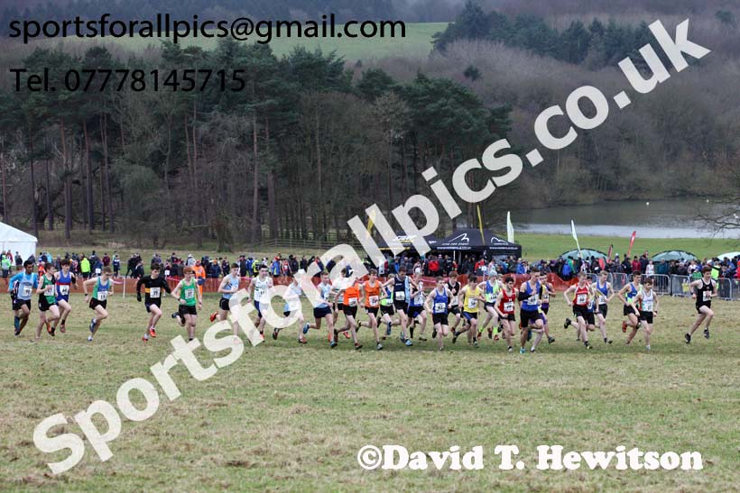 Junior men, 2018 Northern Cross Country Champs., Harewood House, Leeds. Photo: David T. Hewitson/Sports for All Pics
