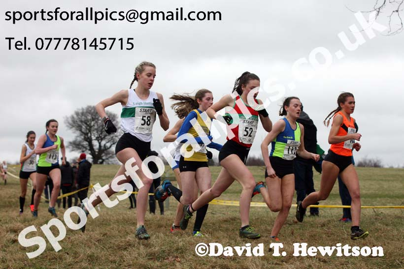 Womens under-17s 2018 Northern Cross Country Champs., Harewood House, Leeds. Photo: David T. Hewitson/Sports for All Pics