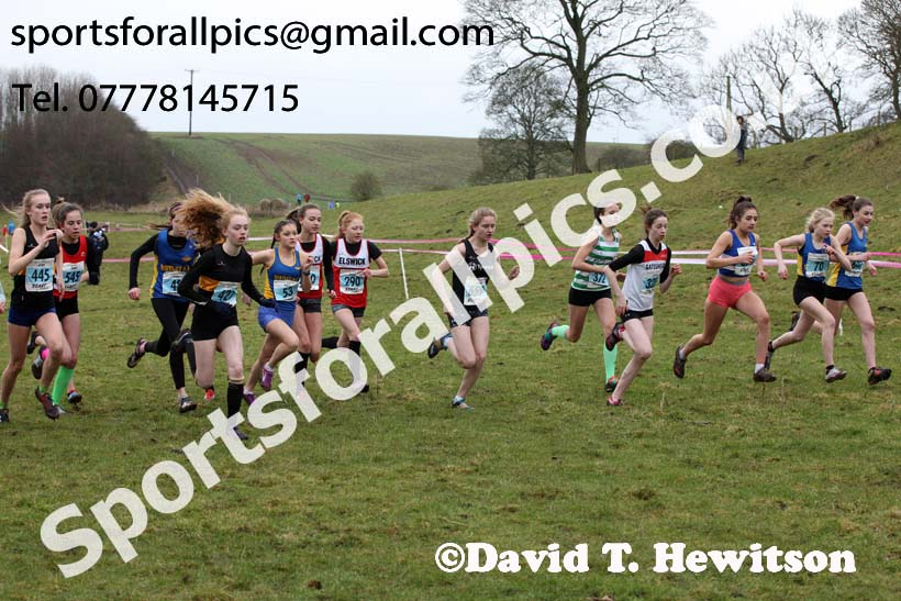 Girls under-15s, Start Fitness NEHL, Thornley Hill Farm, Peterlee, County Durham. Photo: David T. Hewitson/Sports for All Pics