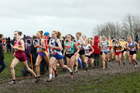 Senior girls 2019 New Balance English Schools Cross Country Champs, Temple Newsam, Leeds. Photo:  David T. Hewitson/Sports for All Pics